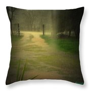 Rainy Daze Again Throw Pillow