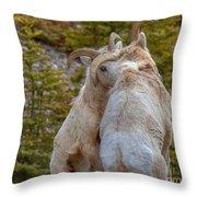 Ram-bunctious Throw Pillow