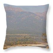 Ramganga River Flowing Through Corbett National Park Throw Pillow