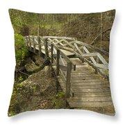 Ramsey Creek Scene 12 Throw Pillow