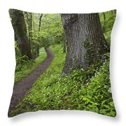 Ramsons By Path In Woods, County Louth Throw Pillow