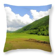 Ranching In The Boundary Throw Pillow