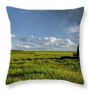 Rangeland View Throw Pillow