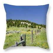 Rangeland Wild Flowers Throw Pillow