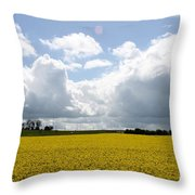 Rape Field Throw Pillow