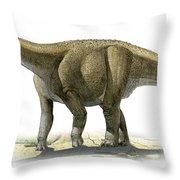Rapetosaurus Krausei, A Prehistoric Era Throw Pillow
