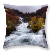 Rapid Waters Throw Pillow by Carlos Caetano