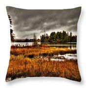 Raquette Lake In The Adirondacks Throw Pillow