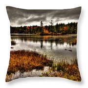 Raquette Lake In Upstate New York Throw Pillow