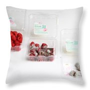 Raspberries Growing Mold Throw Pillow
