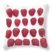 Raspberry Formation Throw Pillow