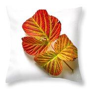 Raspberry Leaves In Autumn Throw Pillow