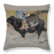 Rat Cat Dog Throw Pillow