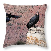 Raven Harassing Condor Throw Pillow