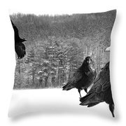 Ravens By A Woods Throw Pillow