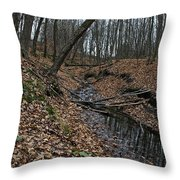 Ravine Creek Throw Pillow
