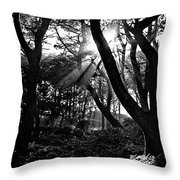 Ray Of Light Throw Pillow