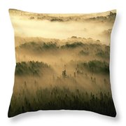 Rays Of Early Morning Sunlight Beam Throw Pillow