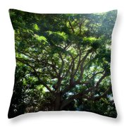 Reach High And Wide Throw Pillow
