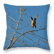 Ready For Take Off Throw Pillow