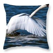 Ready Set Go Throw Pillow