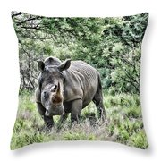 Ready To Charge Throw Pillow