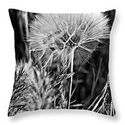 Ready To Fly Throw Pillow