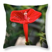 Real Red Throw Pillow