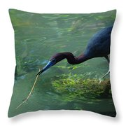 Really A Twig Throw Pillow