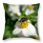 Really Not So Common Throw Pillow