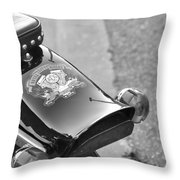 Rear View Throw Pillow
