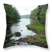 Receding Tide In Maine Part Of A Series Throw Pillow