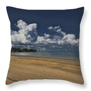 Receding Waters Throw Pillow