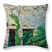 Reclaiming Stonehaven Throw Pillow