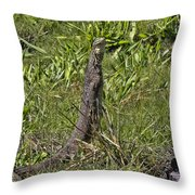 Reconnaissance Mission V2 Throw Pillow
