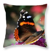 Red Admiral Throw Pillow
