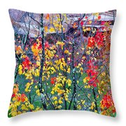 Red And Gold In Quarry At Elephant Rocks State Park Throw Pillow