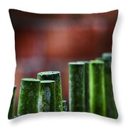 Red And Green Too Throw Pillow