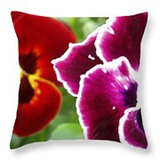 Red And Magenta Pansies Throw Pillow