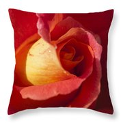 Red And Orange 2 Throw Pillow