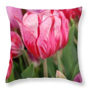 Red And Pink Tulips Throw Pillow