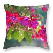 Red And Purple Fuchsias Throw Pillow