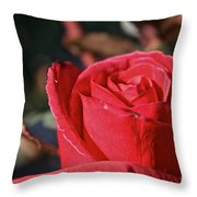 Red And Ready For Review Throw Pillow