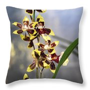 Red And White Orchid  Throw Pillow