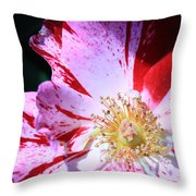 Red And White Speckled Flower Throw Pillow