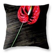 Red Anthrium Throw Pillow