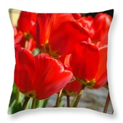 Red Art Spring Tulip Flowers Floral Throw Pillow