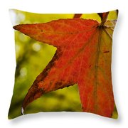 Red Autumn Leaf Throw Pillow