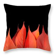 Red Autumn Leaves On Edge Throw Pillow