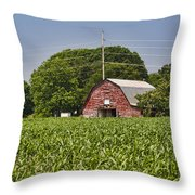 Red Barn - What Charm Throw Pillow